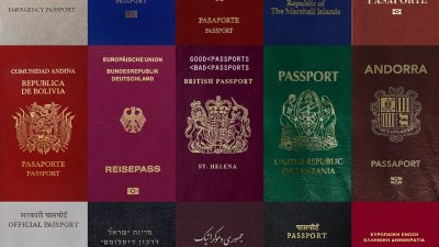 Permalink to:COVID-19 and the future of dual citizenship